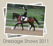 2011 Dressage Shows