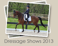 2013 Dressage Shows Photo Gallery
